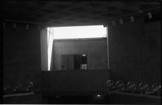 Tobi Ogunleye_35mm